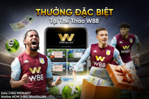 Read more about the article THƯỞNG ĐẶC BIỆT TẠI THỂ THAO W88